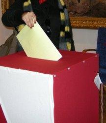 Wybory samorządowe - 2010
